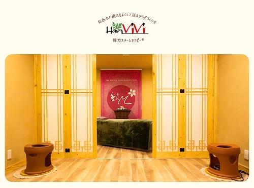 HanViVi(ハンヴィヴィ)のトップ画像